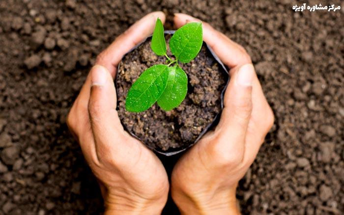 برنامه درسی دوره کاردانی رشته گیاه پزشکی علمی- کاربردی