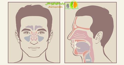 مراحل معافیت پزشکی سینوسهای صورت و منضمات اعضای فوق,شرایط معافیت پزشکی سینوسهای صورت و منضمات اعضای فوق,مشاوره معافیت پزشکی سینوسهای صورت و منضمات اعضای فوق,قوانین معافیت پزشکی سینوسهای صورت و منضمات اعضای فوق,مدارک معافیت پزشکی سینوسهای صورت و منضمات اعضای فوق