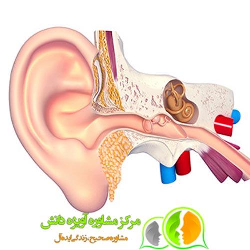 مدارک معافیت پزشکی آنژیوم گوش,شرایط معافیت پزشکی آنژیوم گوش,قوانین معافیت پزشکی آنژیوم گوش,مراحل معافیت پزشکی آنژیوم گوش,مشاوره معافیت پزشکی آنژیوم گوش