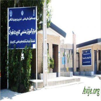 علمی کاربردی جهاد دانشگاهی تهران 3