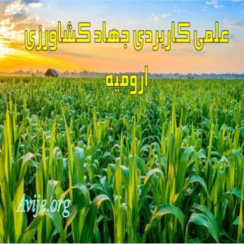 علمی کاربردی جهاد کشاورزی آذربایجان غربی (ارومیه)