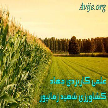 علمی کاربردی جهاد کشاورزی شهید زمانپور