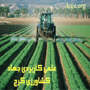 علمی کاربردی جهاد کشاورزی (کرج)