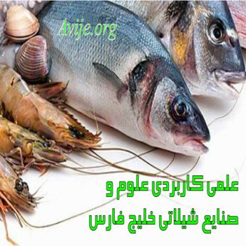 علمی کاربردی علوم و صنایع شیلاتی خلیج فارس