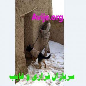 سربازان فراری و غایب
