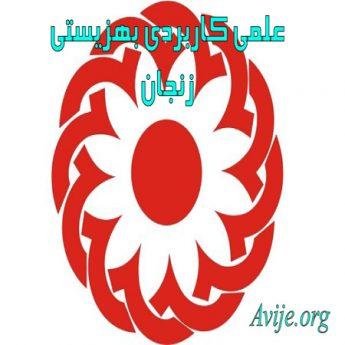 علمی کاربردی بهزیستی و تامین اجتماعی استان زنجان