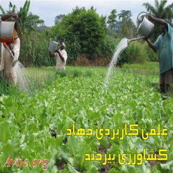 علمی کاربردی جهاد کشاورزی بیرجند