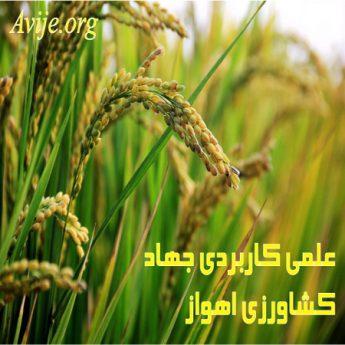 علمی کاربردی جهاد کشاورزی خوزستان (اهواز)