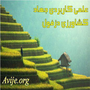 علمی کاربردی جهاد کشاورزی خوزستان (دزفول)