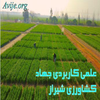 علمی کاربردی جهاد کشاورزی فارس (شیراز)