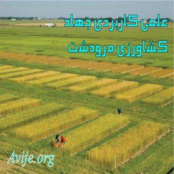 علمی کاربردی جهاد کشاورزی فارس (مرودشت)