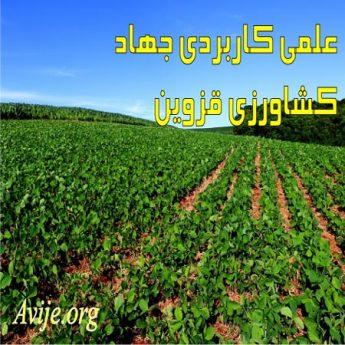 علمی کاربردی جهاد کشاورزی قزوین