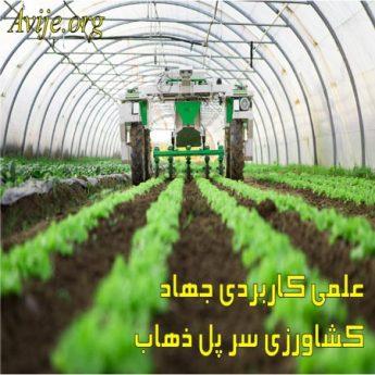 علمی کاربردی جهاد کشاورزی کرمانشاه (سر پل ذهاب)