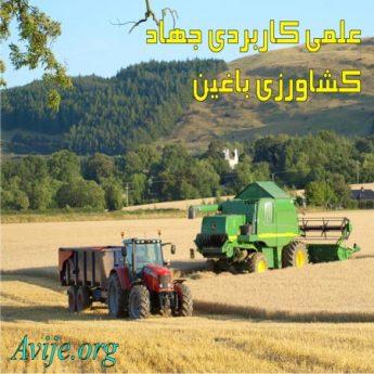علمی کاربردی جهاد کشاورزی کرمان (باغین)