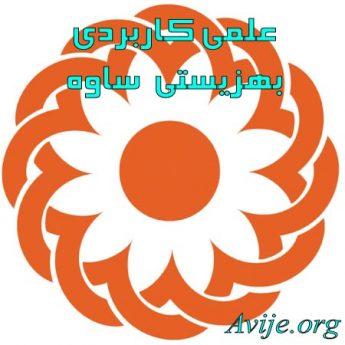 علمی کاربردی بهزیستی و تامین اجتماعی شهرستان ساوه