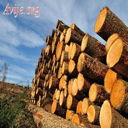 ثبت نام رشته صنایع چوب علمی کاربردی