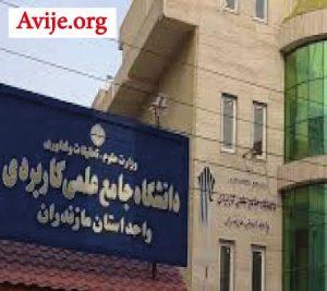 لیست رشته های بدون کنکور دانشگاه علمی کاربردی استان مازندران